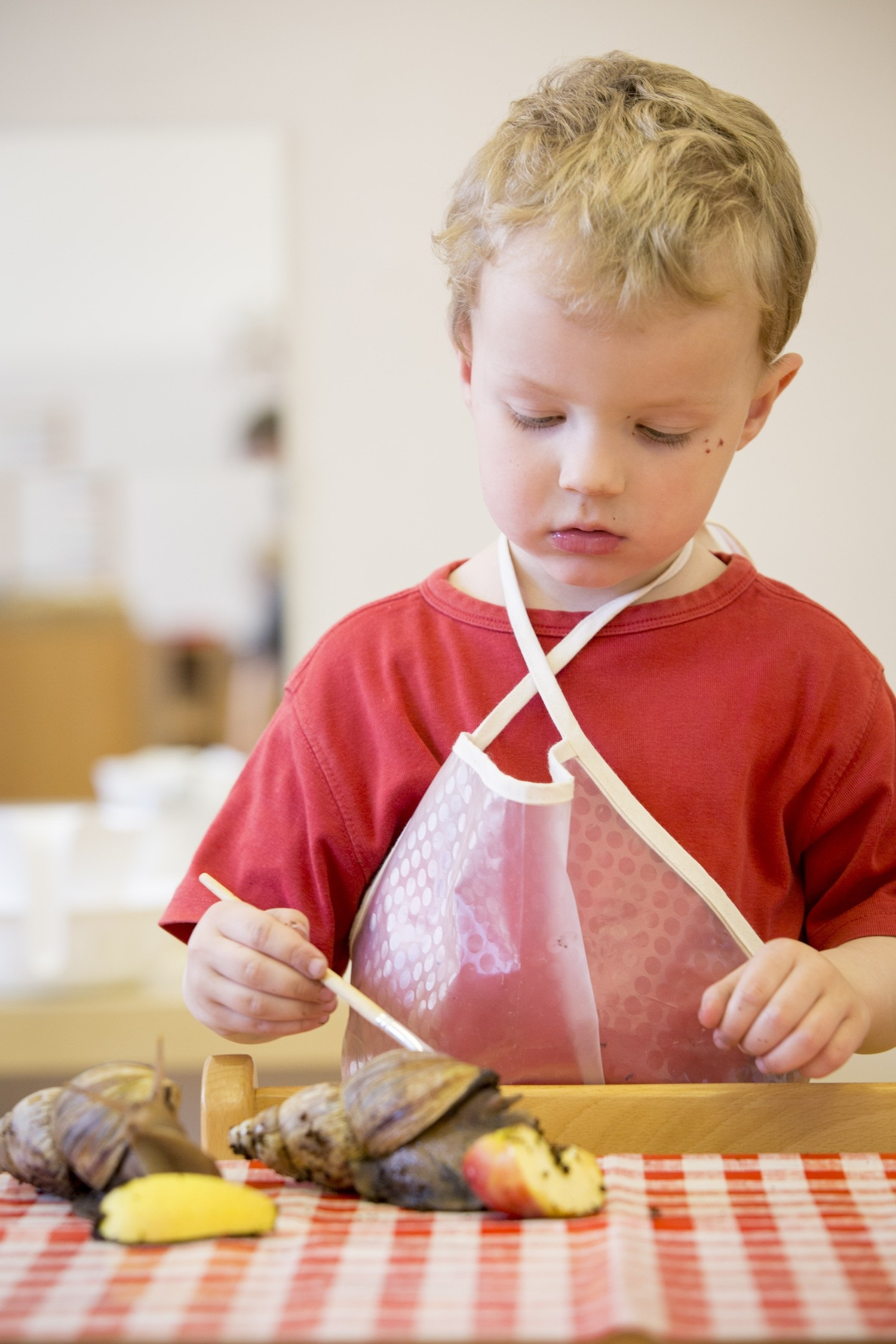 Introduction to Montessori Education