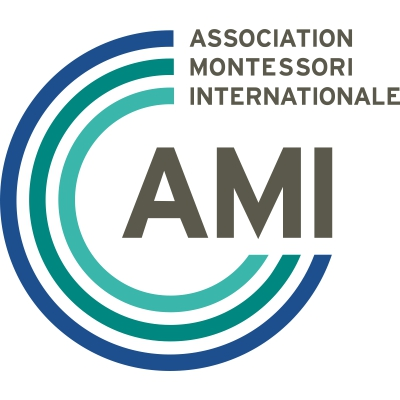 ami-global.org